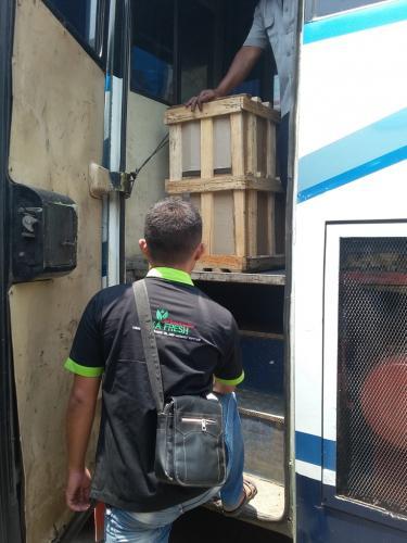 pengiriman via bus damri (Area Sumatara)